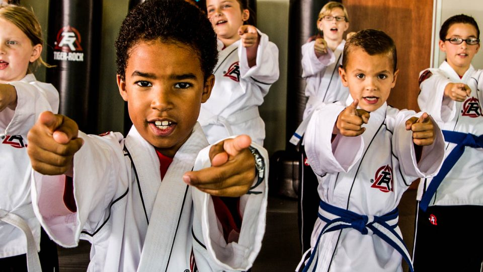 kids martial arts lessons in high point nc