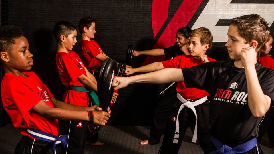 kids martial arts training in high point nc