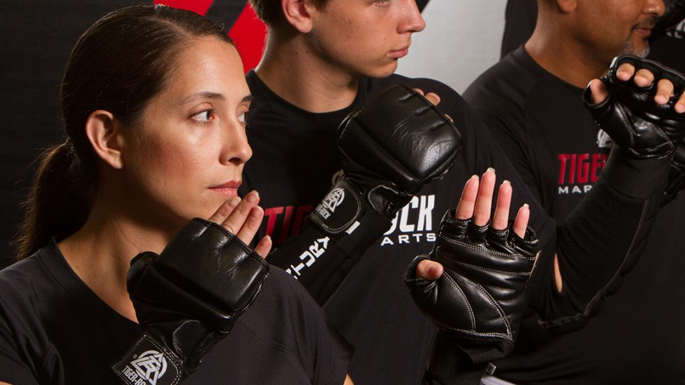 adult martial arts lessons