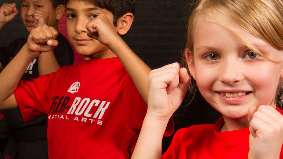 kids martial arts school in high point nc